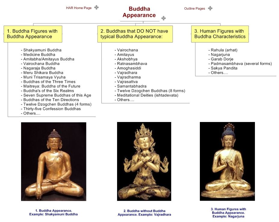 the origins and concepts of shin buddhism Amazoncom: buddha of infinite light: (namu-amida-butsu) in the context of standard buddhist philosophical concepts (eg, selflessness, emptiness those looking for a history of pure land (or shin buddhism, as it's known in japan.